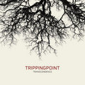 Trippingpoint image