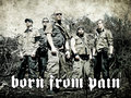 Born from Pain image