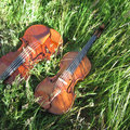 Celtic Fiddle Music | Georgia Nettleton image