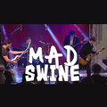 Mad Swine image