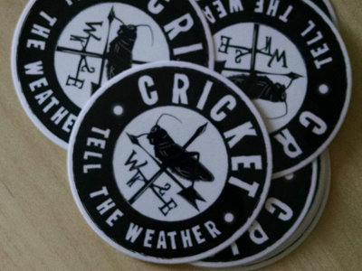 "3.5"" Vinyl Cricket Tell the Weather Sticker & Album Download main photo"