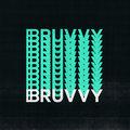 BRUVVY image