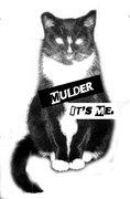 Mulder, It's Me image