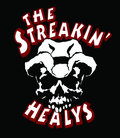 The Streakin' Healys image