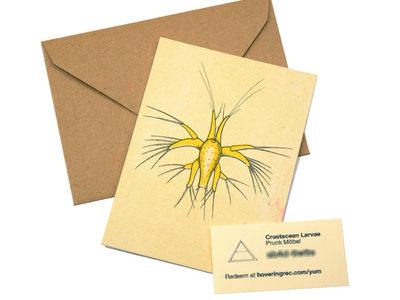 Crustacean Larvae (Silk Screen Printed Collectors Card) main photo