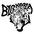 BIG KOREA image