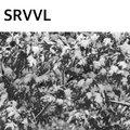 SRVVL image