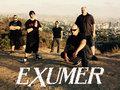 Exumer image