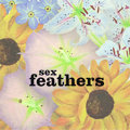 Sex Feathers image