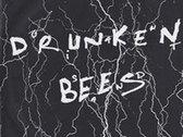 Drunken Bees : Giant Sand 'documentary' DVD photo