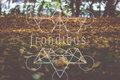 Frondibus image