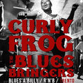 Curly Frog & the Blues Bringers image