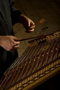 Bill Flanagan - Hammered Dulcimer image