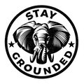 Stay Grounded image
