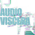 AudioViscera image