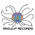 MindFlip Records image