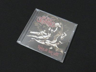 'Tusen år har gått' Jewelcase CD main photo