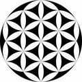 Seven Circles image