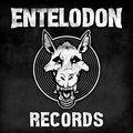 Entelodon Records image