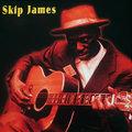 Skip James image