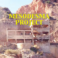 Mesodesma Project image