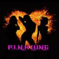 PINK Lung image