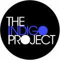 The Indigo Project image
