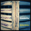 CATSKILLS image