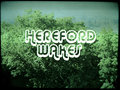 Hereford Wakes image