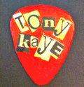 Tony Kaye image