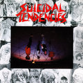 Suicidal Tendencies image