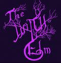 The Wych Elm image