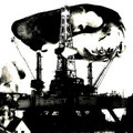 Industrial Ferret image