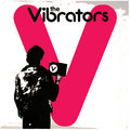 The Vibrators image