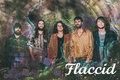 Flaccid image