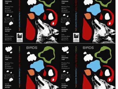 BIRDS Limited Edition Cassette main photo