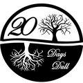 20 Days Dull image