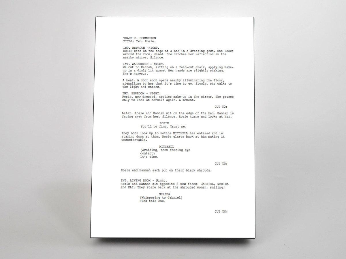 panorama film script digital album feature film dumbsaint
