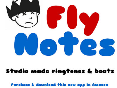 Fly Notes App or SD 32GB main photo