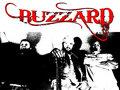 Buzzard image