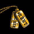 T.H.O.T.C.I.O. image