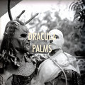 Dracula Palms image