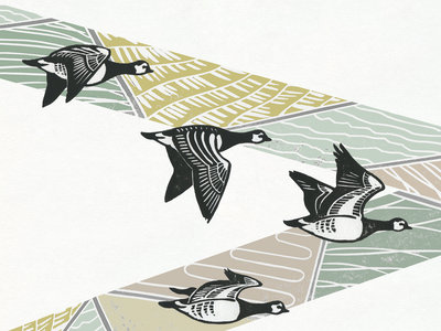 Mounted album artwork print - geese main photo