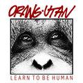 Orangutan image