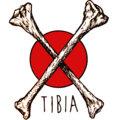 Tibia image