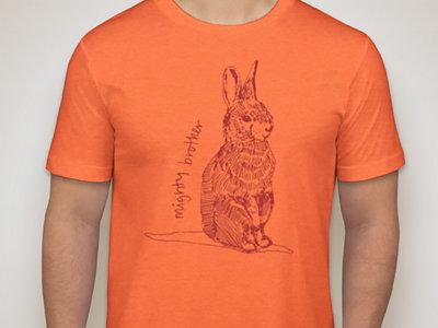 Rabbit Shirt main photo
