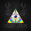 Blind Stag image