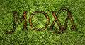 MOXA image