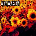 Ayawaska image