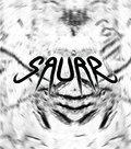 Saurr image